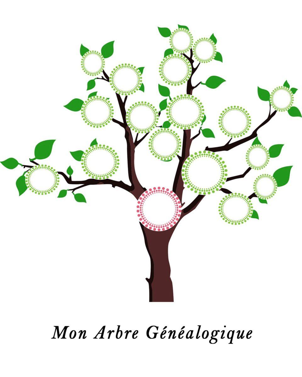 Realiser Son Premier Arbre Genealogique Family Sphere Garde D